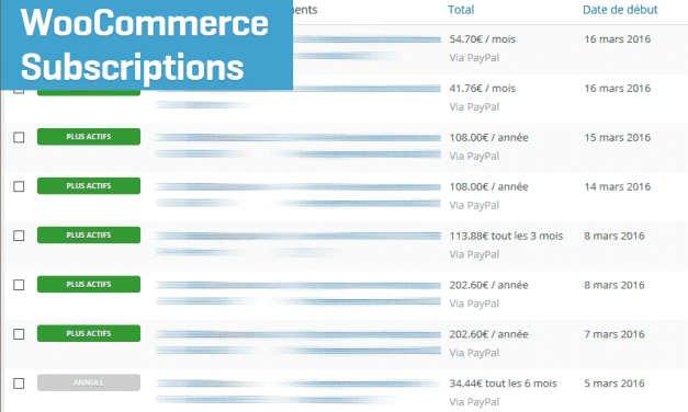 On a testé : WooCommerce Suscriptions