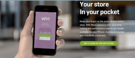 Les meilleurs outils pour gérer votre site WordPress avec votre smartphone