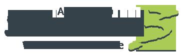 Agence web Success3.fr : créateur de site internet