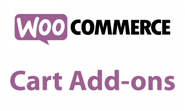 On a testé : Cart Add-ons pour Woocommerce
