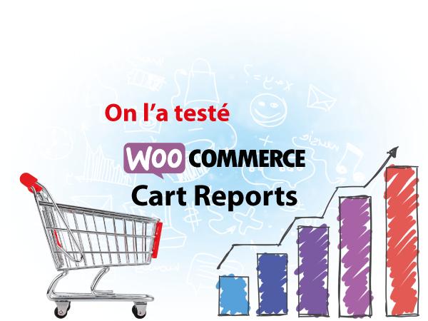 On a testé : Cart Reports pour Woocommerce – Des statistiques de panier