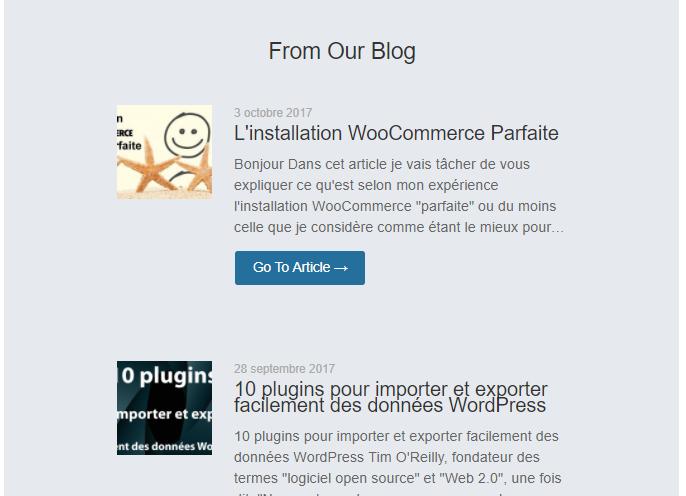 Aryicle de blog automatiquement ajouté a la newsletter