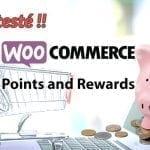 On a testé : Points and Rewards pour Woocommerce – gérez des points de fidélité…