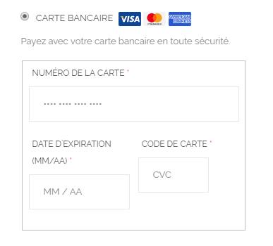 Carte Bleue Woocommerce.Stripe Modifier Le Formulaire De Saisie Des Donnees De Carte
