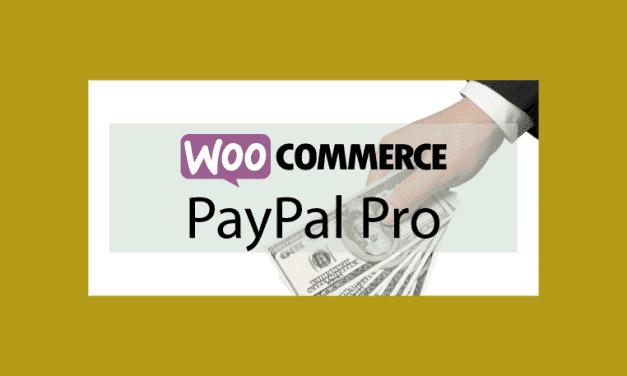 WOOCOMMERCE PayPal Pro – Passerelle de paiement Paypal Pro
