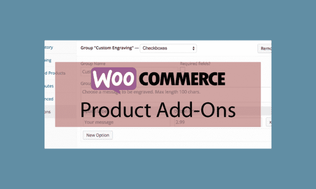 WOOCOMMERCE Product Add-ons – Options sur vos produits