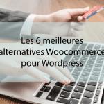 Les 6 meilleures alternatives Woocommerce pour WordPress