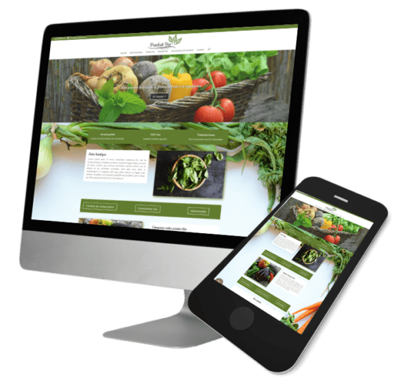 Theme WordPress-Woocommerce – Free Divi Layout -Gratuit – Template Bio