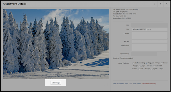 Edit-Image-in-WordPress