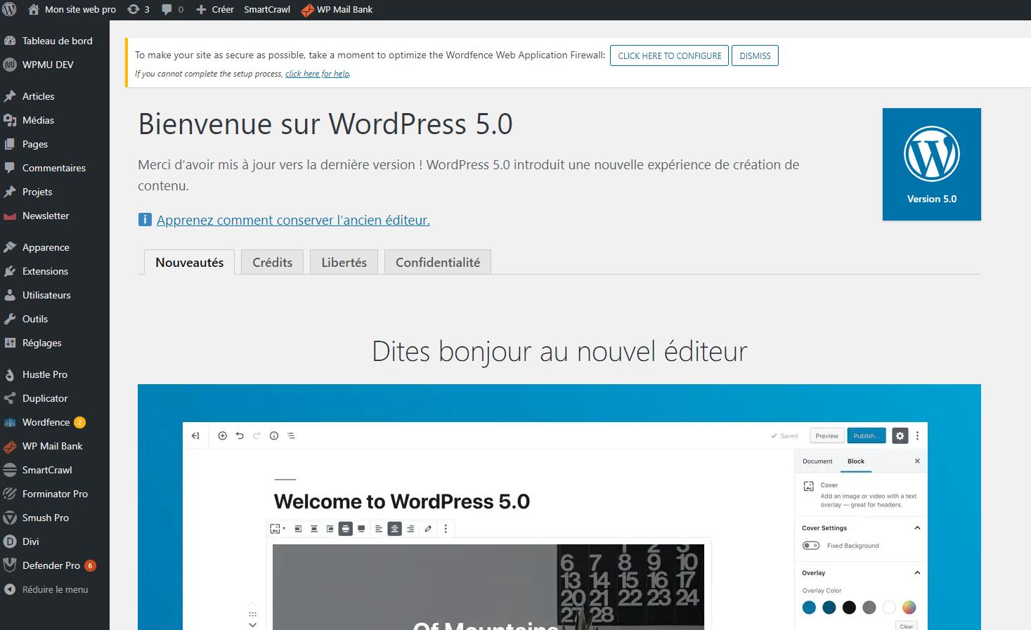 WordPress 5.0 : Doit ont faire la mise à jour ou attendre ?