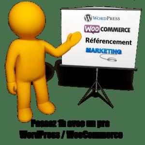 Formation Conseils WordPress & WooCommerce 1h