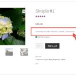 WooCommerce: limiter la description courte avec le bouton «Lire la suite»