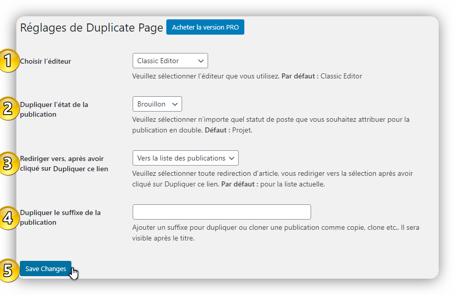 reglage duplicate page