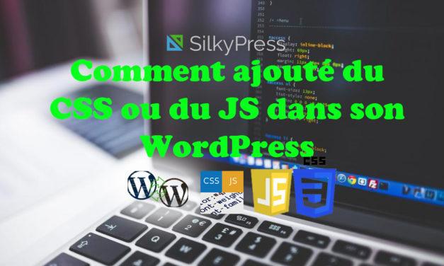 Comment ajouter du CSS ou du JS dans son WordPress