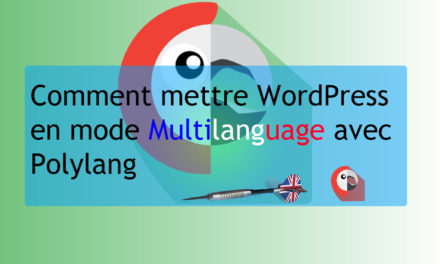 Comment mettre son WordPress en mode Multilanguage avec Polylang