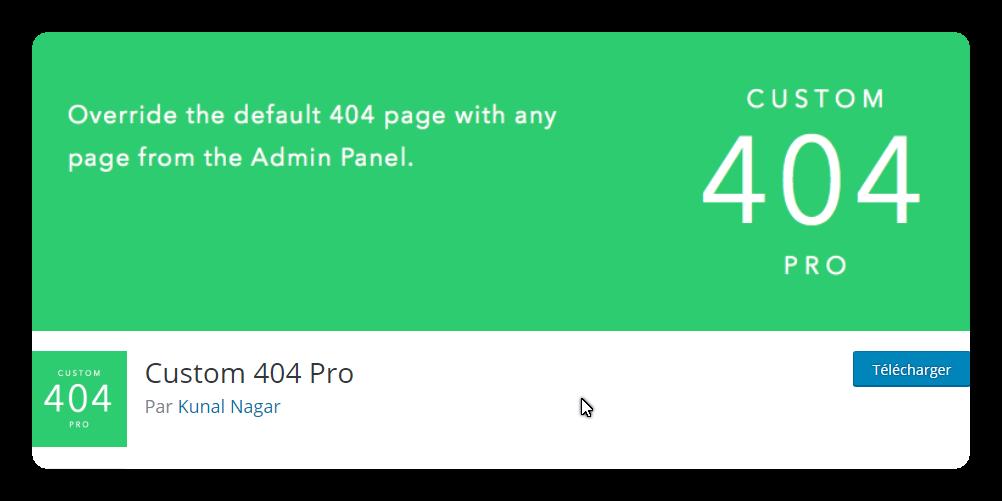 custom 404 pro