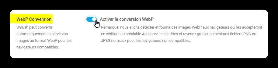 activer la conversion webp