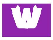 WordPress Web